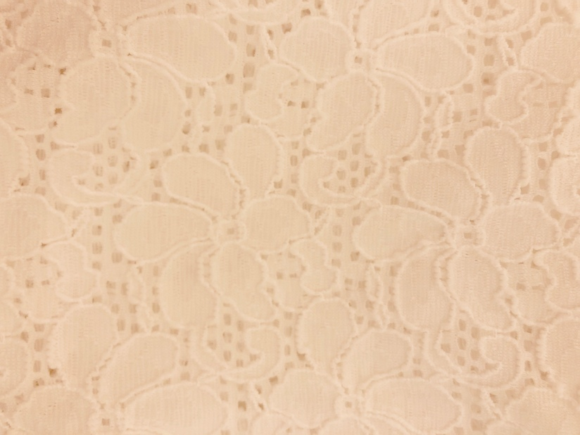 Stretch Lace from Piedmont Fabrics
